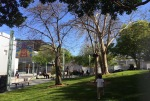 This is Yerba Buena Gardens, a beautiful park just a few steps away from the convention center.  Great place to unwind after the sessions!